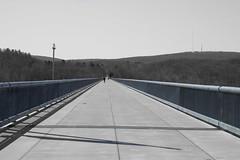 (g_r_i_n_q_o) Tags: bridge color long walkway selective
