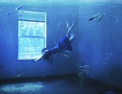 7/52 Window (Rachel.Adams) Tags: ocean fish selfportrait me window water swimming swim trapped underwater escape emptyroom room bubbles drowning drown windowlight 52weekproject letsgetcreative2014