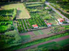 Mini-orchard, Posada (andbog) Tags: sardegna italy canon landscape miniature italia sardinia nu it orchard powershot overlook posada paesaggio compactcamera g12 tiltshift frutteto canong12