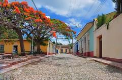 Calles empedradas en Trinidad (Arenamarysol Photography) Tags: street travel trees cuba viajes trinidad arenamarysol
