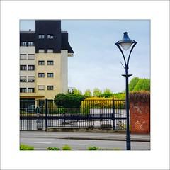 La ville en couleur # 41 (Napafloma-Photographe) Tags: france jaune couleurs forsythia grille fr ville lampadaire arras 2014 pasdecalais couleursenville