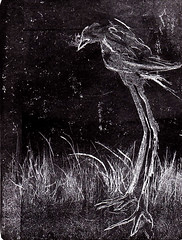 solitario (bigbangbebop) Tags: pajaros existencialismo aguafuerte aguatinta