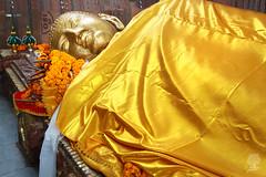 India_0511