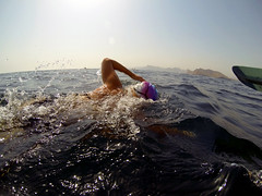 Elbows high please (charlottehbest) Tags: ocean sea water swimming swim island open may adventure swimmer oman challenge 2014 openwater seawater openwaterswimming seaswimming frontcrawl 4km fahalisland seaswim charlottehbest fahalislandswim