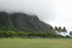 IMG_17893 (mudsharkalex) Tags: hawaii oahu kaneohe kualoaregionalpark kneohe kaneohehi kneohehi