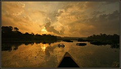 Bow Wow! (WanaM3) Tags: park sky reflection nature sunrise landscape texas sony ngc scenic canoe bayou npc pasadena canoeing paddling goldenhour waterscape waterhyacinth bayareapark clearlakecity a700 goldenmoment armandbayou sonya700 wanam3