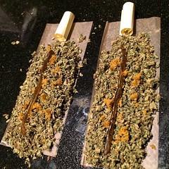 jerm_jilla (weedstache) Tags: weed jane mj mary 420 medical pot oil wax cannabis 710 ents dank dabs mmj prop215 reddit weedstache stereodose