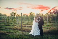 DSC_4211 (simonefox) Tags: wedding sunset nova virginia chains nikon 8 winery va waterford weddingphotography d610 winerywedding