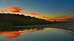 SILENCE (Marie.L.Manzor) Tags: losangeles malibu california us usa beach ocean reflection sky clouds sunset sea water seascape landscape mood peaceful nikon nikkor marielmanzor birds favorites 1000favs 1000favoris