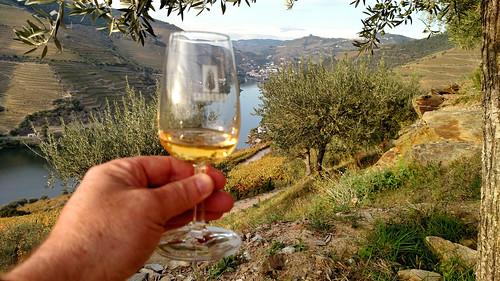 Sandeman Winery-7