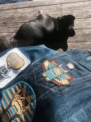 Sewing a pocket patch (Tom Bagley) Tags: patch battlejacket frenchbulldog sunshine shonenknife ironmaiden eddie denim