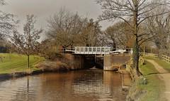 Ripon Canal - Footbridge (Paul Thackray) Tags: yorkshire northyorkshire riponcanal footbridge lock 2017
