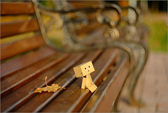 Afler a long walk (tehhyvredina) Tags: autumn bench bokeh tired helios boxy  danbo    helios77m4  danboard 774