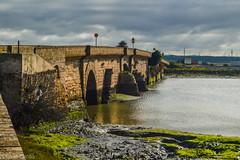 FCP_2-130126.jpg (Fede Cant) Tags: espaa andalucia viajes lugares cadiz sanfernando 2013 puentezuazo