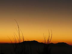 """Lever de soleil (4h du matin, 4°C) <a style=""""margin-left:10px; font-size:0.8em;"""" href=""""http://www.flickr.com/photos/83080376@N03/15223191098/"""" target=""""_blank"""">@flickr</a>"""