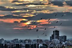 DIsTOpiA (Erre Taele) Tags: blue sunset sky sun art azul atardecer freedom europa europe arte bulgaria fantasy fantasia plovdiv bulgary urdina distopia ilunabarra tracia platinumheartaward flickrbronzetrophygroup