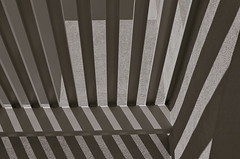 Fingerlings (MPnormaleye) Tags: urban bw abstract monochrome architecture composition design blackwhite bars stripes patterns textures utata