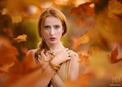 Fall in the Air ({jessica drossin}) Tags: autumn portrait woman fall leaves photography leaf seasons dress curls redhead textures redhair actions overlays jessicadrossin wwwjessicadrossincom jdbeautifulworldcollection