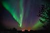 Aurora Myrland (mansachs) Tags: norway landscape norge lowlight nighttime nordnorge auroraborealis andøya nordlys nordiclight nordland northernlight andøy nordlicht andoya myrland