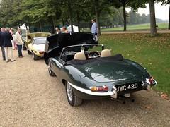 1966 Jaguar E Type 4.2 Manual Gearbox (mangopulp2008) Tags: uk court 1966 e type jaguar manual hampton sept 42 concourse gearbox elegance 2014 of uploaded:by=flickrmobile flickriosapp:filter=nofilter