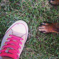 Dia 275: paseando por el parque #project365 #proyecto365marieta (marieta.c) Tags: square squareformat unknown proyecto365 iphoneography instagramapp uploaded:by=instagram proyecto365marieta