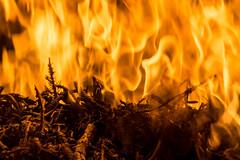 Fire Mountain (Joel Bramley) Tags: hot night fire flames flame burn bonfire heat twigs