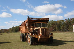 Cline End Dump (dbro1206) Tags: truck rusty forgotten weathered arkansas resting roadside cline oldiron