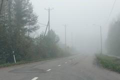 (idasalminen) Tags: road autumn mist fall beautiful fog streetlight streetlamp