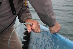 Pull! (Luna Lupin) Tags: up islands boat san hand juan crab rope pot sound pulling puget