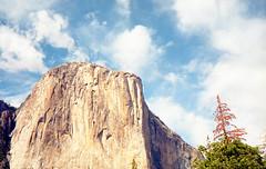 img031 (Tyler_1001) Tags: california park sky cliff usa tree film rock clouds analog 35mm canon kodak el national 35mmfilm yosemite cannot 100 capitan ektar