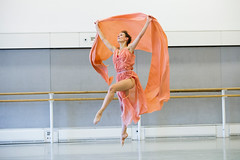 Cast changes and additional casting for The Royal Ballet's Autumn Season 2014/15