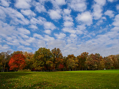P1050452.jpg (mtfbwy) Tags: ohio fall colors leaves landscape unitedstates cleveland westlake bradley reservation metropark