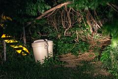 (aroee) Tags: wip neighborhood dim 2014 potomacheights landscapemanmade 00raw