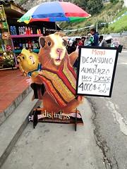 """Ah, le cochon d'Inde fait son entrée dans les assiettes! • <a style=""""font-size:0.8em;"""" href=""""http://www.flickr.com/photos/113766675@N07/15375261237/"""" target=""""_blank"""">View on Flickr</a>"""