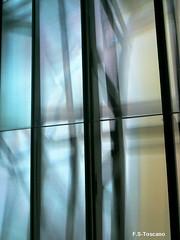 Imágenes del MUNCYT en A Coruña 5. MUNCYT images in A Coruña 5. (Esetoscano) Tags: light españa abstract luz glass wall architecture reflections pared spain arquitectura coruña experimental galicia galiza abstracto vidrio reflejos a muncyt museocienciatecnología museumsciencetecnology aceboyalonso2006