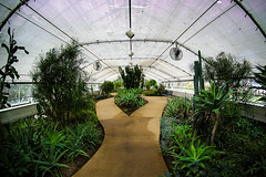 Birdhaven Greenhouse (MPBecker) Tags: new house green canon matt illinois meg conservatory il fisheye greenhouse joliet lenox 65mm birdhaven opteka 60d