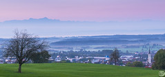Good Morning Bodensee (MiddlePart) (WJabroad) Tags: lake nikon bodensee constance d800e