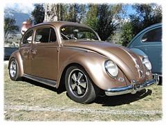 VW Beetle 1953-57 (v8dub) Tags: auto old classic car vw bug volkswagen automobile beetle automotive voiture german cox oldtimer oldcar collector kfer coccinelle kever fusca aircooled wagen pkw klassik maggiolino bubbla worldcars