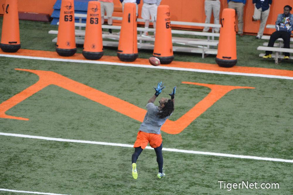 Clemson Photos: 2013, De Andre  Hopkins, Football, proday