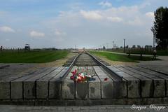 La Fin (joménager) Tags: auschwitz shoah pologne campdeconcentration ruby3 monumenthistorique nikonpassion mémoire