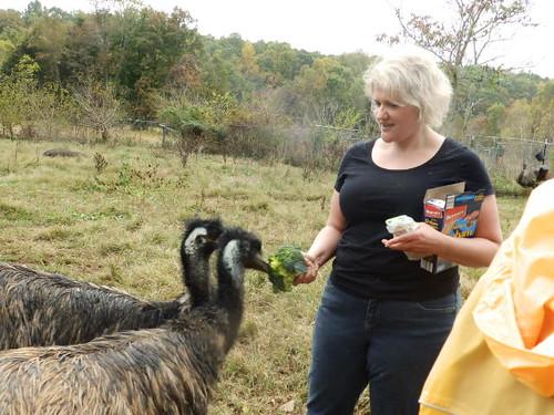 Kristen emus
