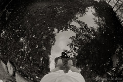 me on pond (Takeshi Nishio) Tags: uv  ilfordfp4plus nikonfm3a   16mmfisheye  ei125 spd1120deg7min filmno798
