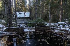 Seitseminen (Juho Holmi) Tags: park macro nature k trekking trek finland dc finnland pentax hiking 5 sigma hike 45 national 17 28 af finnish 70 k5 finlandia overnighter seitseminen 1770mm f2845 seitsemisen visitfinland kansallipuisto