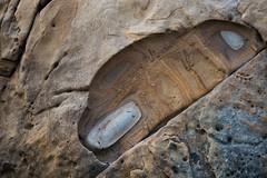 Weston Beach (ExarchIzain) Tags: monterey bigsur carmel pt lobos pointlobos