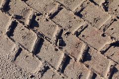 Truck Treck (gripspix (OFF)) Tags: texture spur sand track storage scrapyard quarrel textur schrottplatz lagerplatz steibruch 20141014