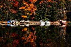Autumn Beach (B.E.K. Photography) Tags: autumn trees lake ontario leaves reflections boats smoke algonquin hdr nikond600