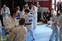 Judo-habay071