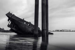 shipwrecked   l   2017