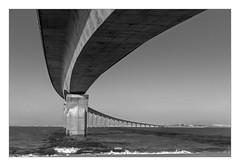 Le Pont de l'Île de Ré en N&B (philturp) Tags: noiretblanc ouvrage ilederé sea poitoucharentes mer france monumentsarchitecture pont rivedouxplage nouvelleaquitaine fr bridge