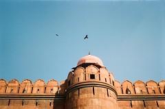 Red Fort (szmenazsófi) Tags: smenasymbol smena film analog analogue 35mm lomo lomography india redfort delhi newdelhi bird birdofprey sky roof architecture